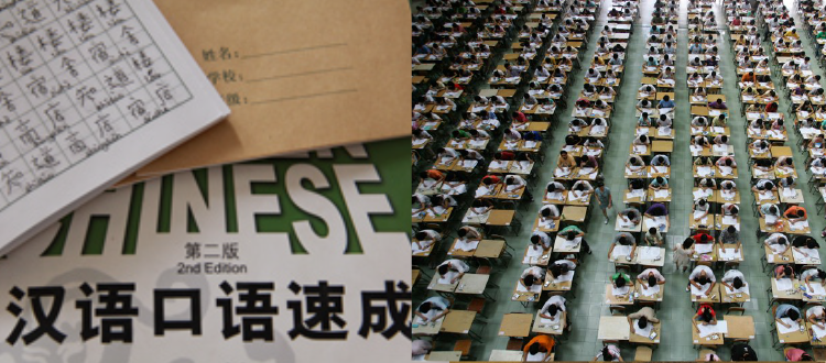 Assessing the Proficiency Levels of Chinese Language Learners: An Introduction to the New HSK Test